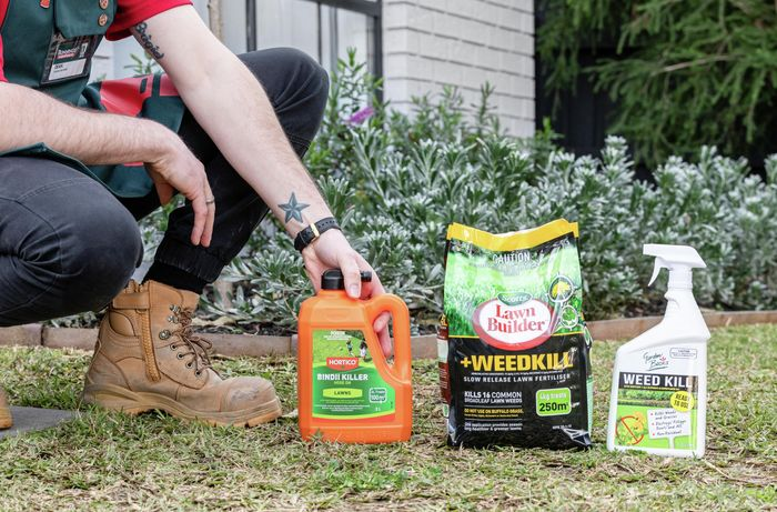 A person kneeling on the grass with three different types of weed killers