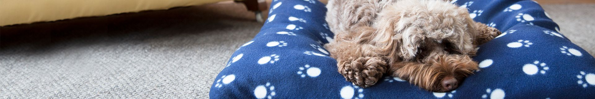 A brown dog lying on a Happy Tails dog bed.