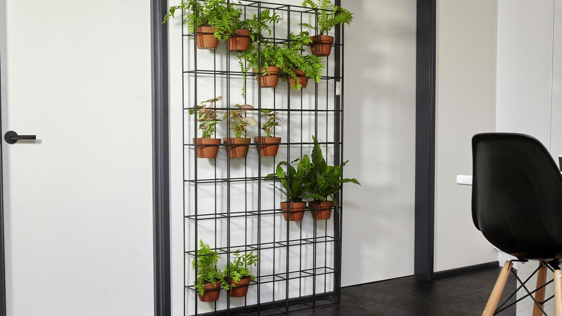 A completed vertical garden made from wire, placed in a white and teal themed room